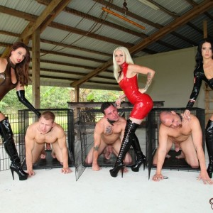 Dom Brianna and a few other sadomasochistic nymphs abuse masculine slaves before caging them