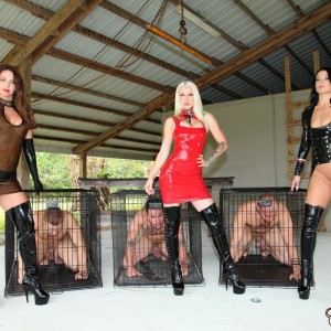 Dom Brianna and a few other brutish femmes manhandle male slaves before caging them