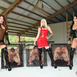 Authoritative type Brianna and several other sadistic women manhandle male submissives before caging them